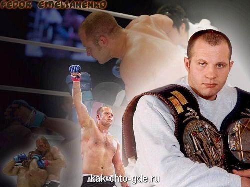 Fedor Emelianenko-