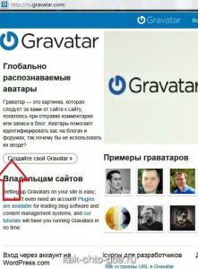 зайдите на сайт ru.gravatar. com и укажите свой e-mail