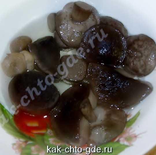 фото грибы маринованные