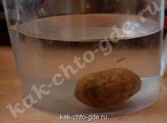 В пресной воде картофель тонет