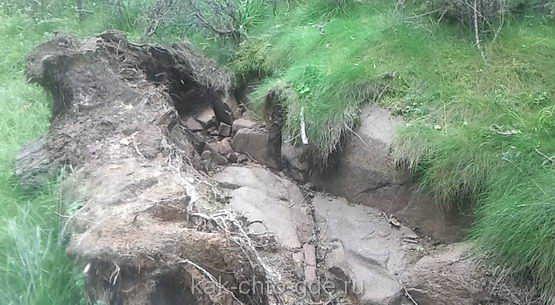 Валаам, слой почвы 15-20 см