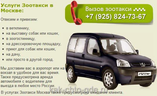 такси для собак в Москве