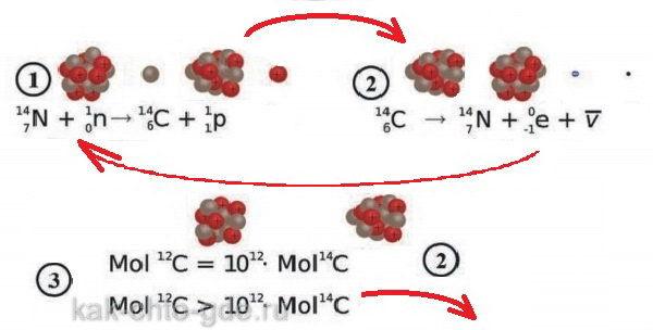 метод радиоуглеродного анализа